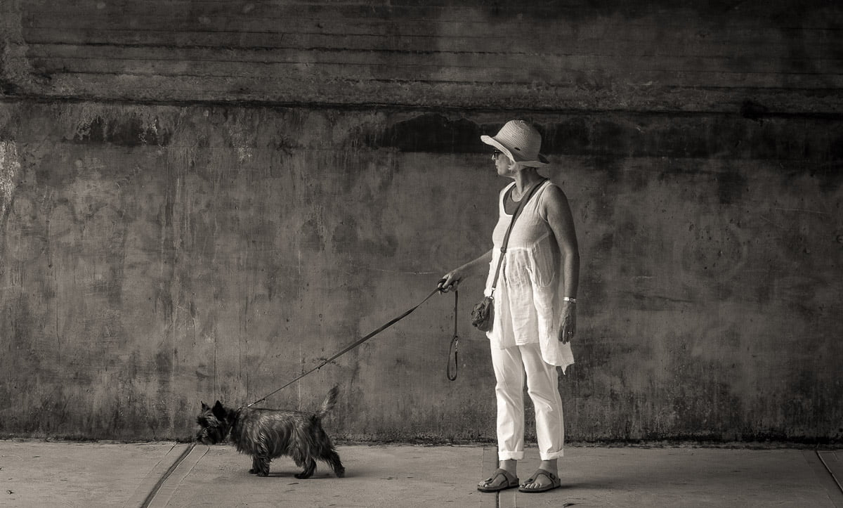 dog walker with dog on leash